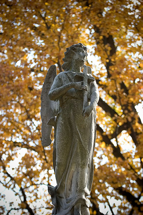 Angel and Cross, Bellefontaine Cemetery, Saint Louis, MO //