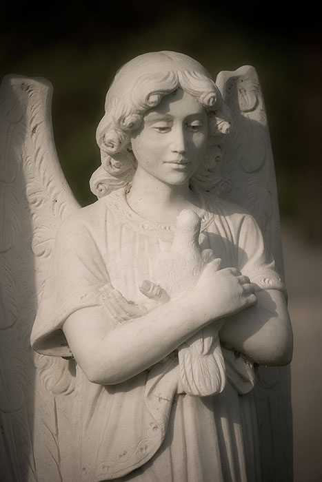 Soft Focus Angel, Calvary Cemetery, Saint Louis, MO //