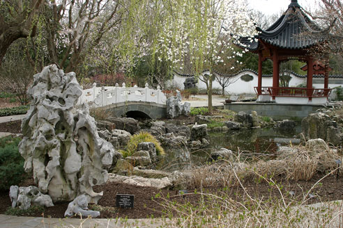 Chinese Garden, Shaws Gardens, Saint Louis, Missouri //